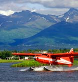 Anchorage Tours and Activities