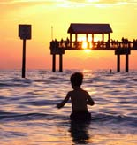 Clearwater Beach Tours and Activities