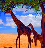 Kenya Tours and Activities
