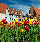 Latvia Tours and Activities