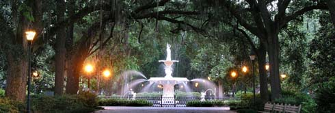 Savannah Tours and Activities