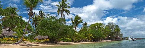 Tonga Tours and Activities