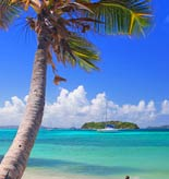 Trinidad and Tobago Tours and Activities