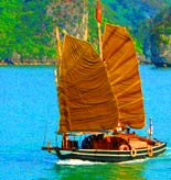 Vietnam Tours and Activities